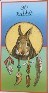 """Rabbit,"" from Medicine Cards by Jamie Sams & David Carson, Illustrations by Angela Werneke"